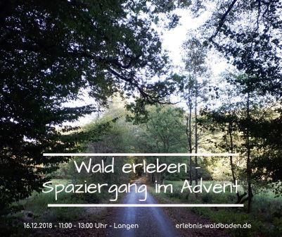 wald-erleben-spaziergang-im-advent-langen-dezember-2018